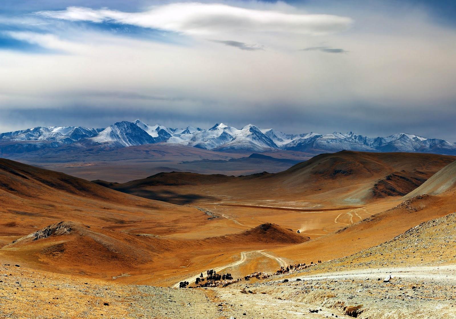 возвращается фото и картинки монголии качественных фото